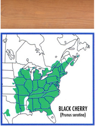 map of where black cherry grows and a wood swatch